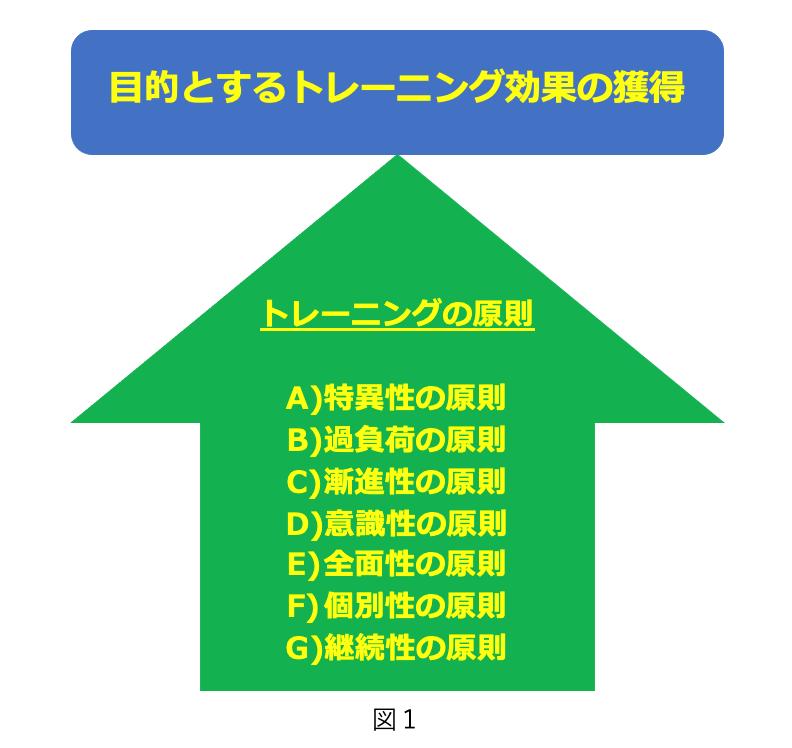 トレーニング 原則 東京脊椎クリニック